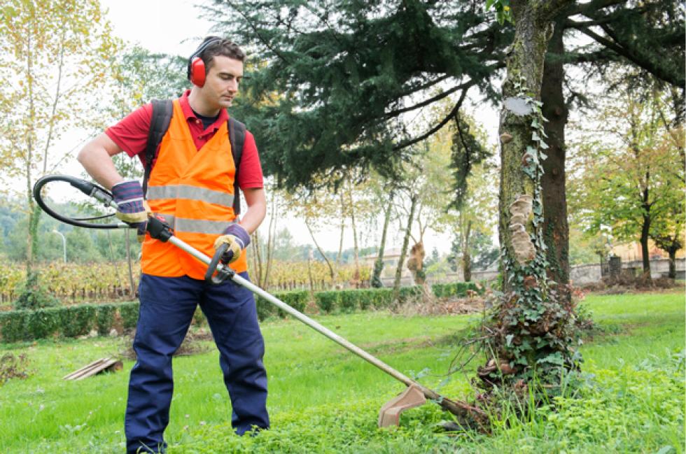 Profesional de la jardinería cortando el cesped en un jardín comunitario